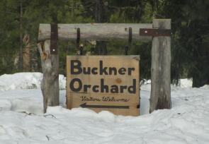 Buckner Orchard Sign